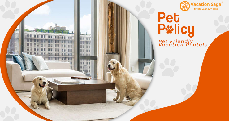 Pet Policy In Pet Friendly Apartments For Rent